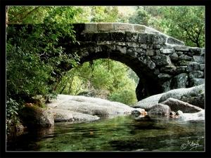 /Pontes III