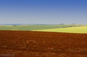 Paisagem Natural/MARILÂNDIA DO SUL/PR - Área Rural (III)