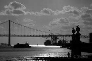 Paisagem Urbana/Bridge