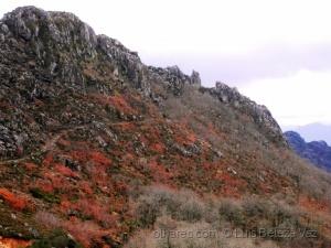 Paisagem Natural/Monte do Castelo em Castro Laboreiro.