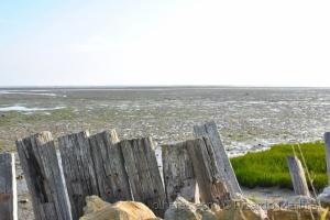 Paisagem Natural/ó mar, ó mar...