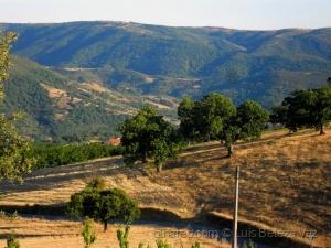 Paisagem Natural/A caminho da Serra da Nogueira
