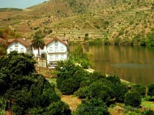 Paisagem Natural/No rio Douro perto do Pocinho.