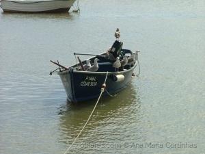 /Não tenho barqueiro......... (PF ler)