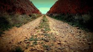 Gentes e Locais/The Road