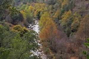 """Paisagem Natural/""""Rio Ceira..."""""""