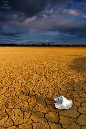 /The Salton Sea