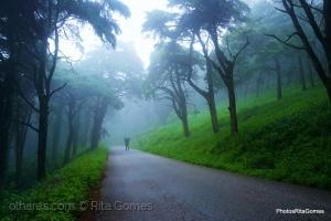 /Caminha por entre o nevoeiro