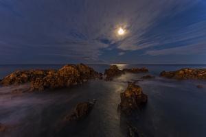 /Moonlight on the ocean