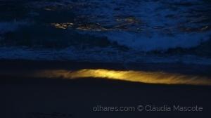 Paisagem Natural/Mar Dourado