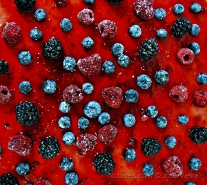 /Frutos vermelhos