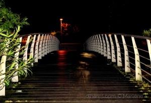 /Dark Bridge
