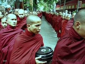 /Monges budistas!!!