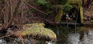 /Poluição no rio.