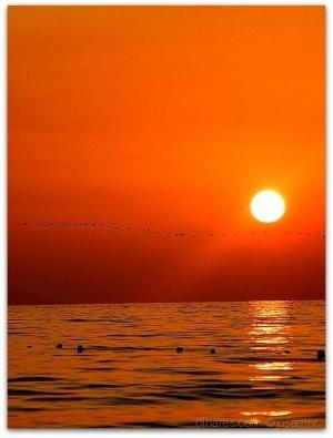 /por do sol 19