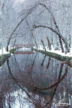 Paisagem Natural/Espelho Meu