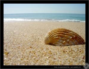 /Esperando pelo mar