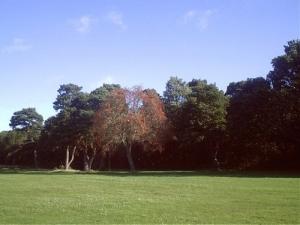 /Início outono - Inglaterra