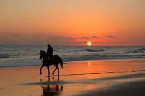 /Por-do-Sol na praia