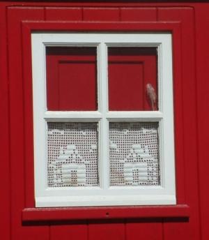 Outros/janela com rendas