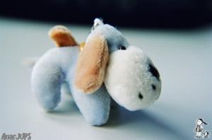 /Meu Cãozinho querido...