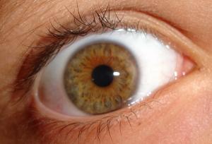Macro/my eye