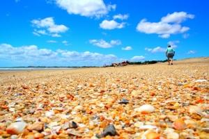 Paisagem Natural/Praia do Coqueiro - Piauí - Brasil