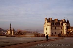 /Chateau d'Amboise