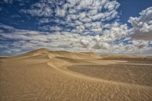 /Desert