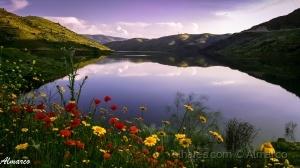 /Primavera em Trás-os-Montes