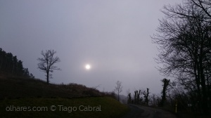 /Nevoeiro