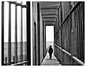 /Caminhando se faz o caminho...