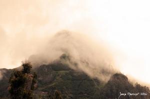 Paisagem Natural/Misty Mountain