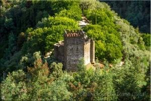 /Castelo de Arouce