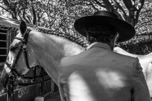 /Festival do Cavalo Lusitano do Oeste (3 de 5)