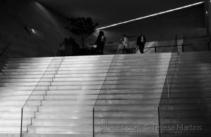 """/""""Os primeiros passos na escada da sabedoria devem"""