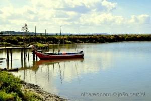 /Na Reserva Natural do Sado