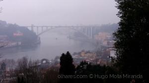 /Nevoeiro no Rio!!   ler