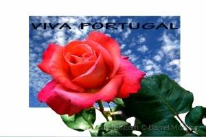 /VIVA  PORTUGAL
