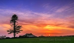 Paisagem Natural/Sunset and a Farm