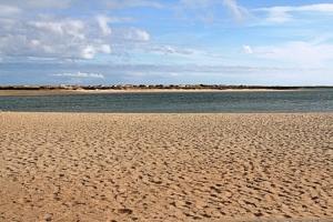/Ria Formosa # 4 Algarve
