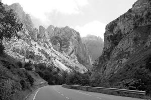 Paisagem Natural/Numa estrada perto de si....