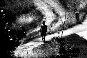 /O caminho faz-se caminhando....(pf. ler desrição)