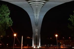 /Pontes