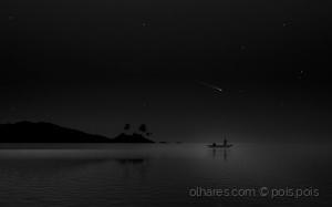 /Quiet Nights