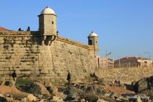 /Forte  de S. Francisco Xavier (Castelo do Queijo)