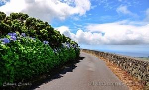/A Ilha Azul. Açores.