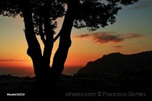 /Entardecer no Pico dos Barcelos (Ler sff)