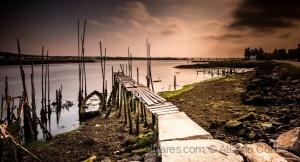 /Low tide