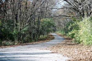 Paisagem Natural/Rock Cut Park - Illinois
